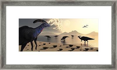 Parasaurolophus Dinosaurs Gather Framed Print by Mark Stevenson