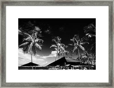 Parasols At Private Beach Surrounded By Palm Trees Islamorada Florida Keys Usa Framed Print by Joe Fox