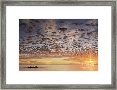 Paratroopers Framed Print by Michele Steffey