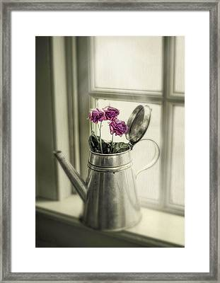 Parched Framed Print by Robin-Lee Vieira