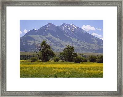 Pardise Valley  Framed Print