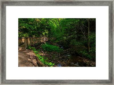 Parfrey's Glen Trail Framed Print