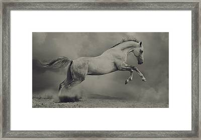 Parical Framed Print