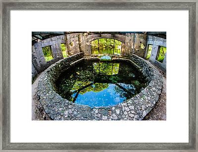 Paridise Springs Framed Print