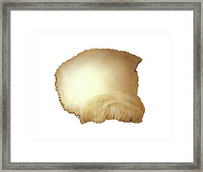 Parietal Bone Framed Print