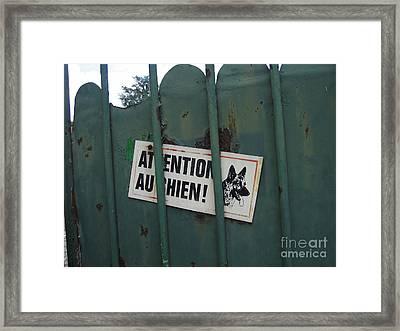 Paris - Farm Dog Framed Print