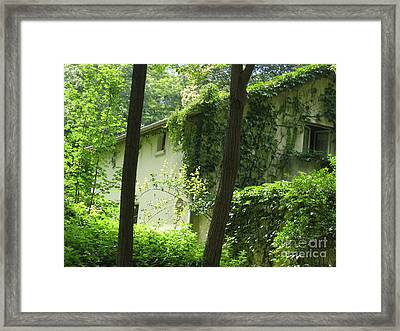 Framed Print featuring the photograph Paris - Green House by HEVi FineArt