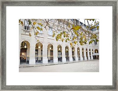 Paris Palais Royal Columns - Paris Winter White Palais Royal Architecture Framed Print by Kathy Fornal