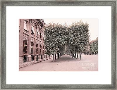 Paris Palais Royal Gardens Trees Architecture - Paris Romantic Palais Royal Garden Landscape Framed Print by Kathy Fornal