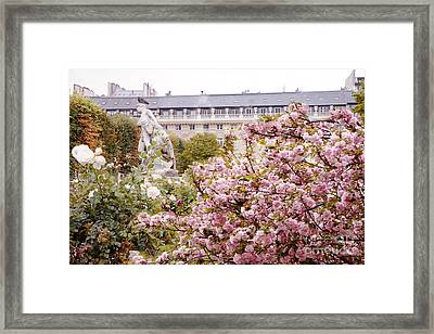 Paris Palais Royal Rose Sculpture Garden - Paris Spring Cherry Blossoms At Palais Royal Garden Framed Print by Kathy Fornal