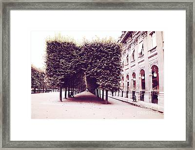 Paris Palais Royal Row Of Trees And Paris Palais Royal Garden Architecture Framed Print by Kathy Fornal
