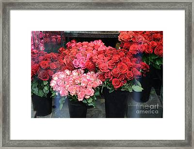 Paris Red And Pink Roses - Paris Dreamy Roses Photography - Paris Valentine Red Roses  Framed Print