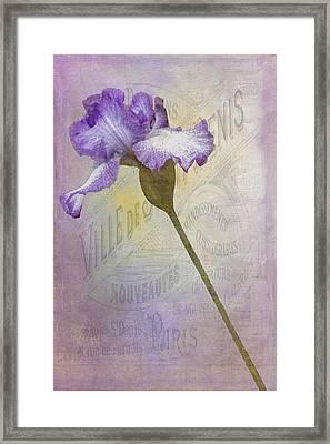 Parisian Purple Framed Print by Chanin Green