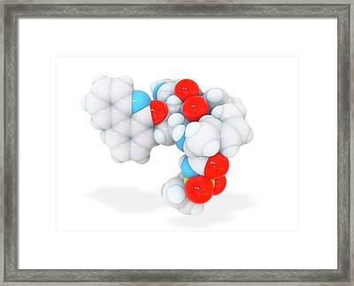 Paritaprevir Drug Molecule Framed Print