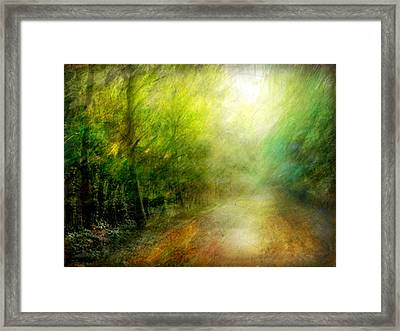 Framed Print featuring the photograph Park #7. The Colors Of Silence by Alfredo Gonzalez