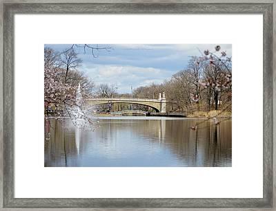 Park Avenue Bridge Framed Print