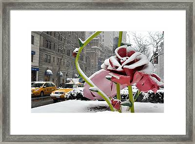 Framed Print featuring the photograph Park Avenue Rose In The Snow by Diane Lent