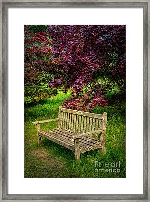 Park Bench Framed Print by Adrian Evans