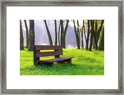 Park Bench And Green Grass Framed Print