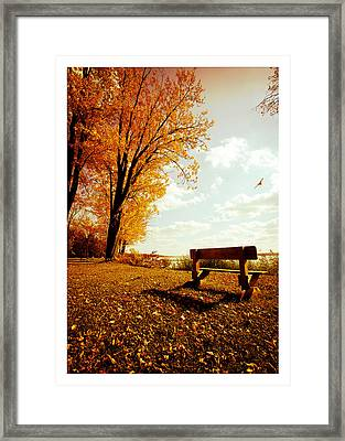 Park Bench Framed Print by Chris Babcock