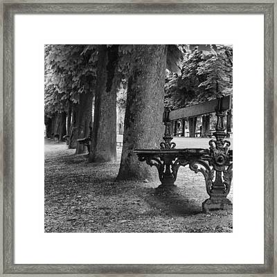 Park Bench In Paris Framed Print