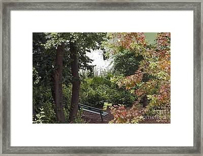 Framed Print featuring the photograph Park Bench by Kate Brown