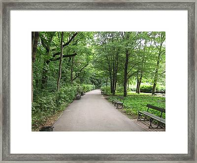 Park Bench Poland Framed Print by Nora Boghossian