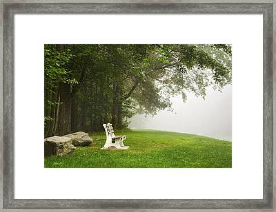 Park Bench Under A Tree In The Morning Fog Framed Print