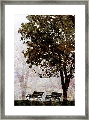 Park Benches Framed Print by Carol Leigh
