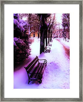Park Benches In Snow Framed Print by Nina Ficur Feenan