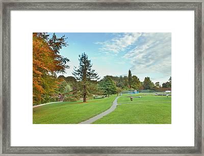 Park In Autumn Framed Print