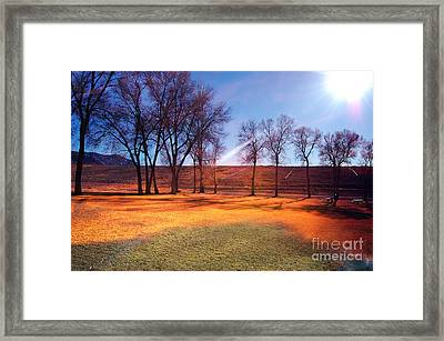 Framed Print featuring the photograph Park In Mcgill Near Ely Nv In The Evening Hours by Gunter Nezhoda