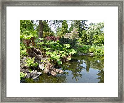 Framed Print featuring the photograph Park Pond by Laurie Tsemak