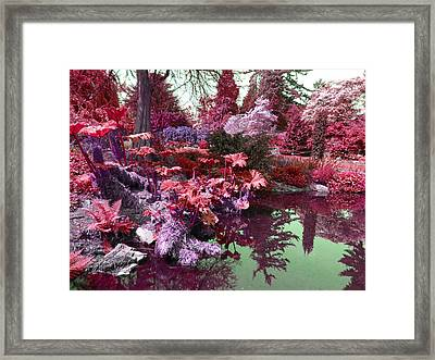 Framed Print featuring the photograph Park Pond Red by Laurie Tsemak