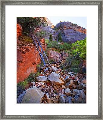 Framed Print featuring the photograph Zion National Park Utah Usa by Richard Wiggins