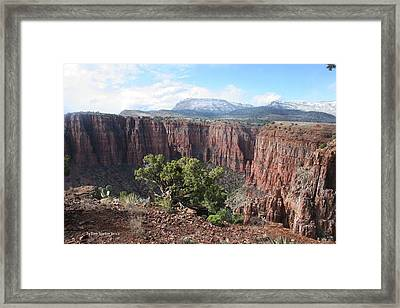 Framed Print featuring the photograph Parker Canyon In The Sierra Ancha Arizona by Tom Janca