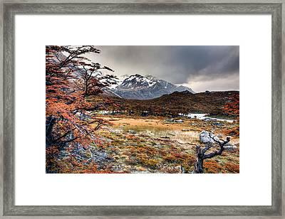 Parque Nacional Los Glaciares Framed Print by Roman St