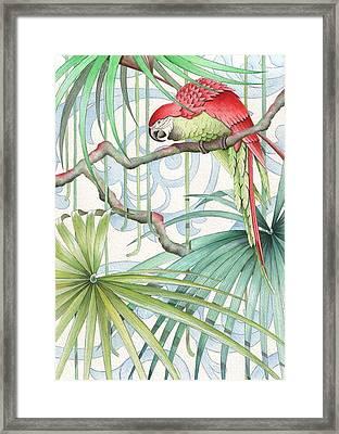 Parrot, 2008 Framed Print