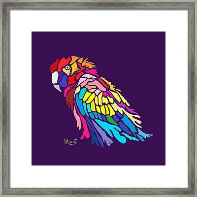 Parrot Beauty Framed Print by Anthony Mwangi