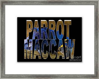 Parrot Macaw Framed Print by Marvin Blaine