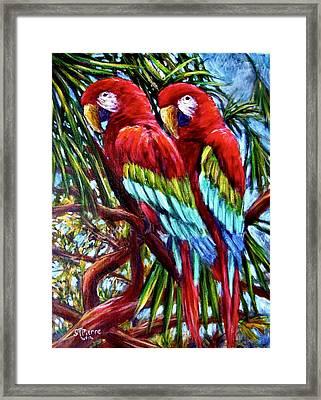 Parrot Pals Framed Print by Sebastian Pierre