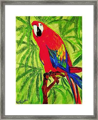 Parrot In Paradise Framed Print by Renee Michelle Wenker