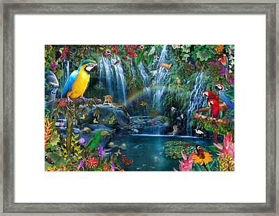 Parrot Tropics Framed Print
