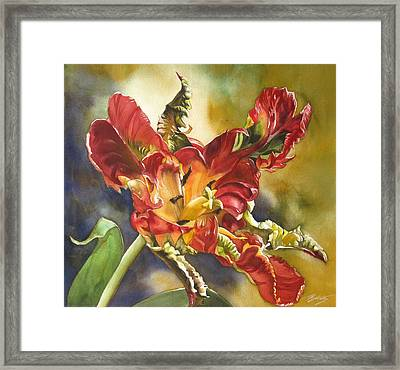 Parrot Tulip With Blue Framed Print
