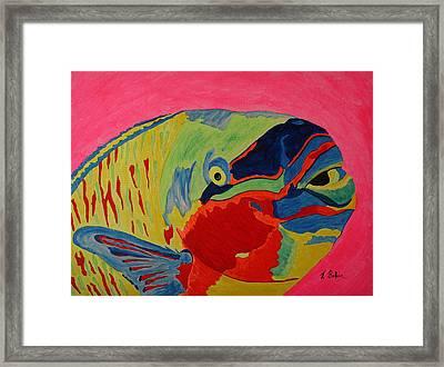 Parrotfish Framed Print