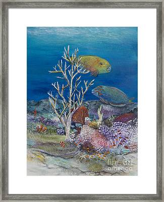 Parrots Of The Reef Framed Print