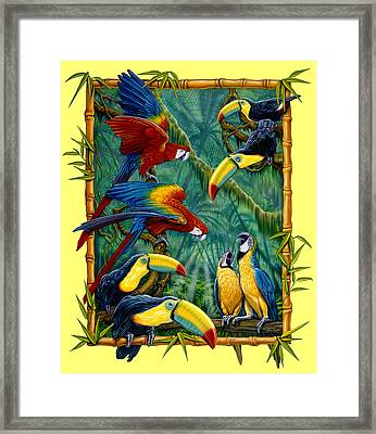 Parrots Yellow Framed Print by Larry Taugher