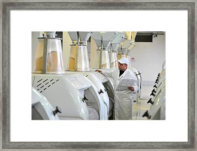 Part Of A Semolina Mill Framed Print by Science Photo Library