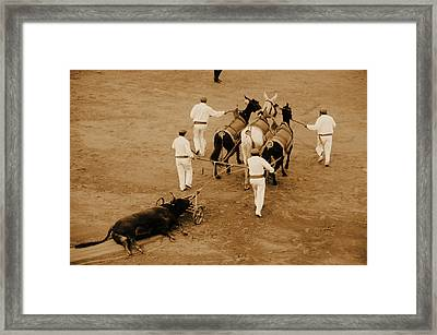 Part Of The Tradition Framed Print by Laura Jimenez