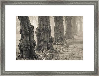 Partial Recall Framed Print by Odd Jeppesen